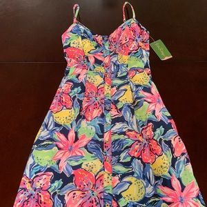 Lilly Pulitzer Size 00 Easton Dress